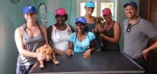 Volunteer veterinary service on Carriacou island.