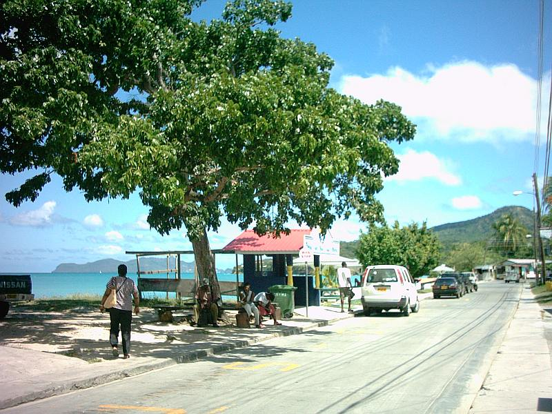 The coastline of HarveyVale on Carriacou.
