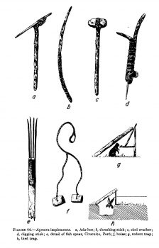 Hunting weapons and tools by amerindians.