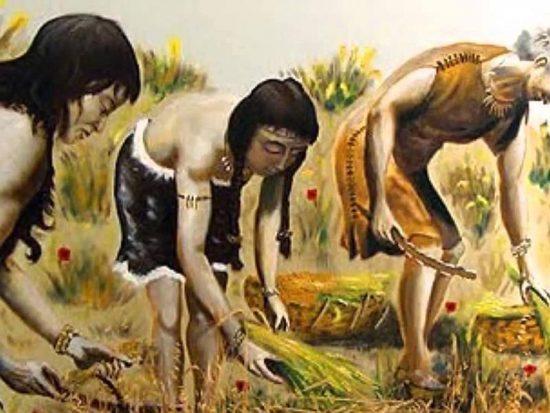 Agricultural arawak women.
