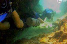 Diving at Arc du Vero Carriacou.