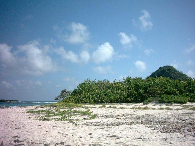 White island beach north.
