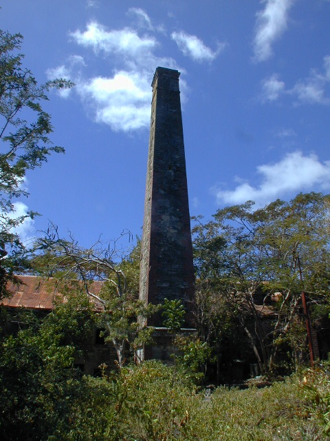 Chimney ruin in Dumfries - Carriacou.