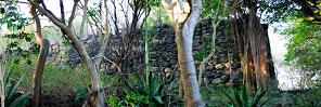 Estate house ruins on Carriacou.