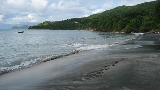 Sparrow beach north.